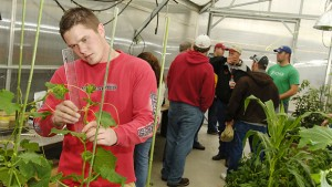 studentsgreenhouse